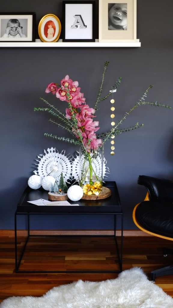 cymbidie-blume-flowers-bloomydays