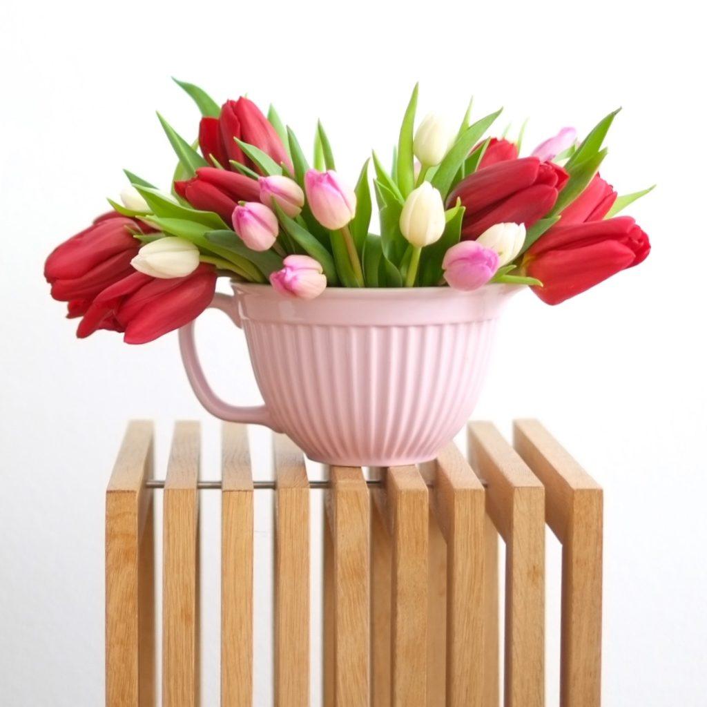 blumen-tulpen-fruehling-herrundfraukrauss